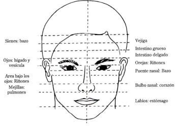 lectura-facial