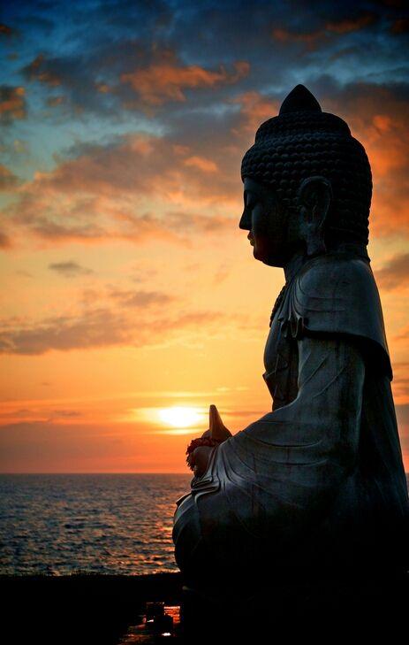 6 cosas que necesitas para seguir avanzando en la meditación