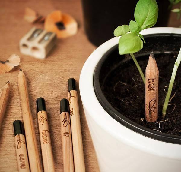Un lápiz que se convierte en planta