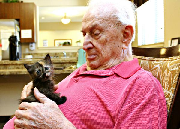 (Pima Animal Care Center)