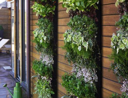 La belleza de los jardines verticales: 4 ejemplos para tu casa