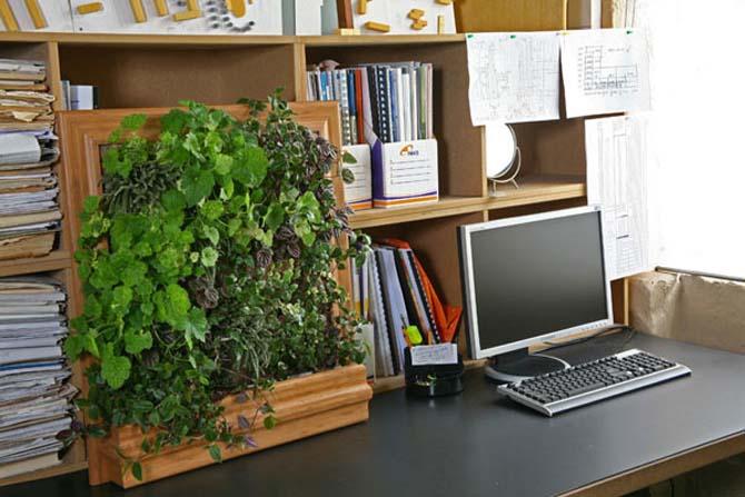 cool-vertical-garden-home-office-decor
