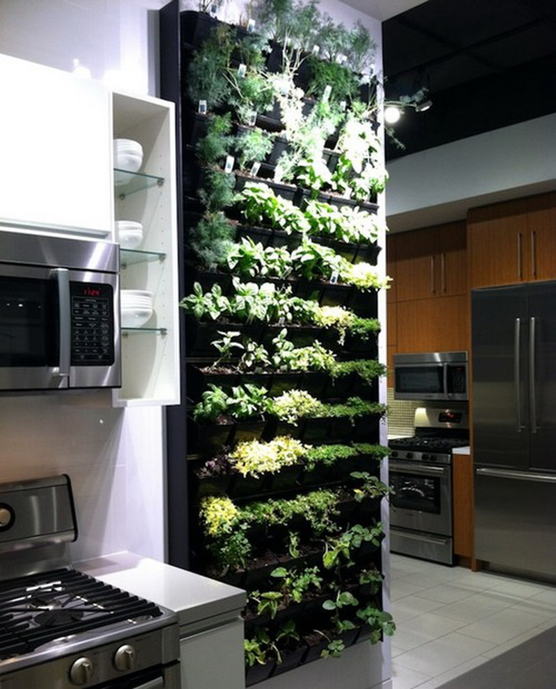 prependicular-indoor-gardening-ideas-feats-with-white-wooden-kicthen-cabinet-and-electric-stove