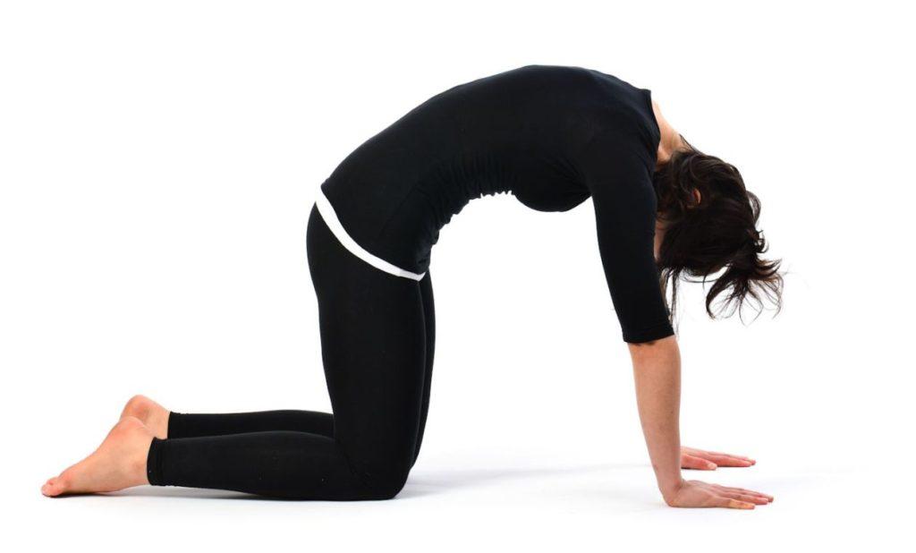 postura-del-gato-yoga
