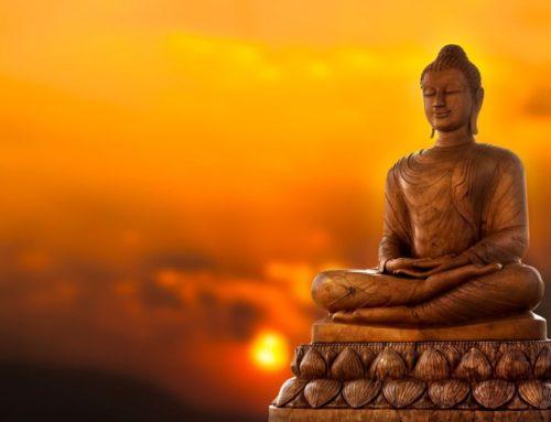 Lo que aprendí en mis 8 días de meditación en silencio
